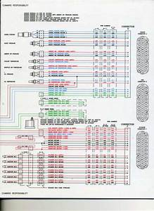Cummins Ism Ecm Pinout Diagram