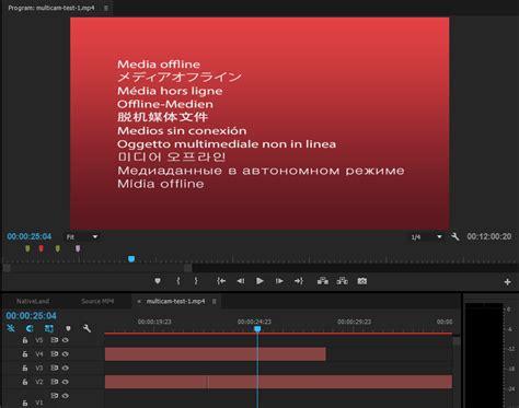 Link Media Premiere by Relinking Offline Media In Premiere Pro