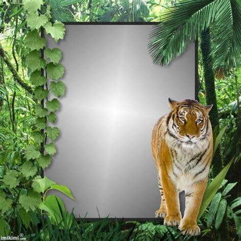 jungle walk httpimikimicommainviewkimiijtp
