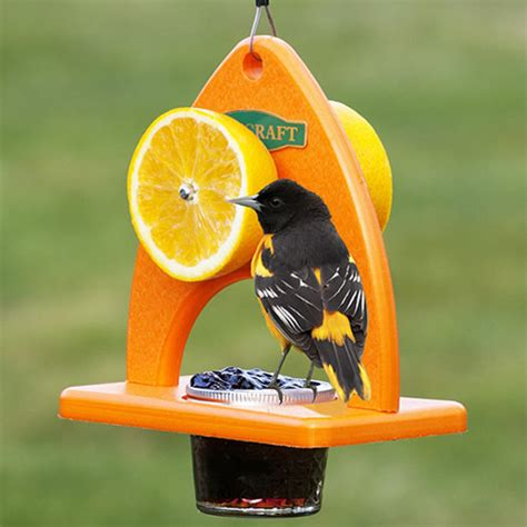 Oriole Feeder Grape Jelly by Duncraft Oriole Delight Feeder