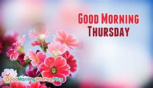 Good Morning Thursday Images | www.pixshark.com - Images ...