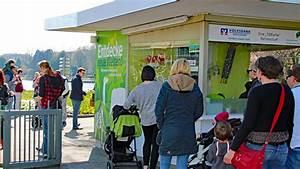 Verkaufsoffener Sonntag Karlsruhe 2018 : zoo karlsruhe das ist das seeb hnen programm ab pfingsten 2018 ~ Orissabook.com Haus und Dekorationen