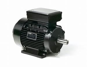 Asynchronous single-phase (monophase) electric motors