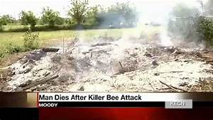 Killer bees attack: Texas man stung to death by ...