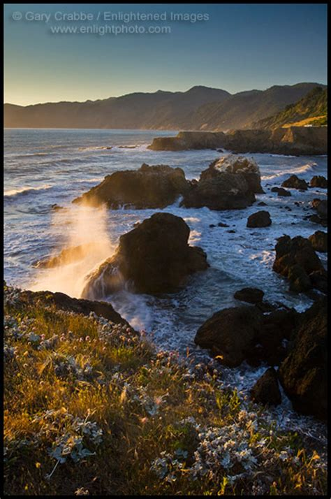 photo shelter cove lost coast humboldt county