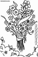 Bouquet Coloring sketch template