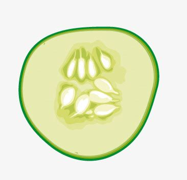 cucumber slice clipart cucumber slice clipart how to format cover letter