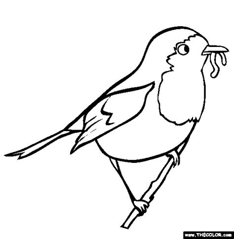 bird coloring pages color   picture   robin     library