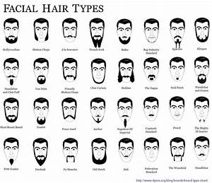 Beard Types And Names Your Guide Styles Popular Beards Try