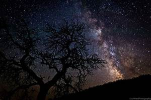 Stars in the Night Sky | Poems of Love, Spirit, and Stars ...