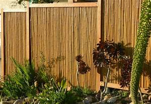 Bambus Im Garten : bambus sichtschutz sch n und ko freundlich ~ Markanthonyermac.com Haus und Dekorationen