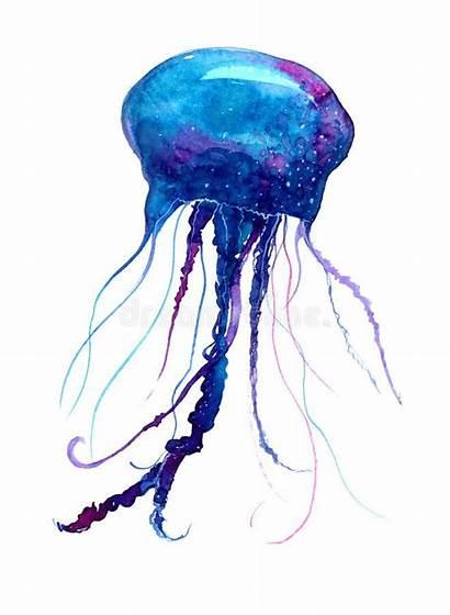 Jellyfish Background Watercolor Medusa Tattoo Painting Illustration