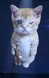 Miley Cyrus Performance Cat
