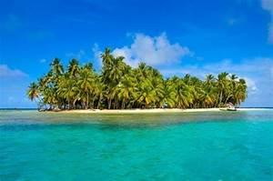 Bilder Von Palmen : die sch nsten trauminseln mit weissen sandstr nden und palmen am meer ~ Frokenaadalensverden.com Haus und Dekorationen