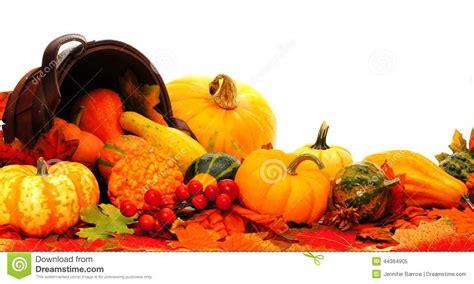 Pumpkin Harvest Border