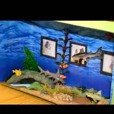 diorama  steps  pictures wikihow
