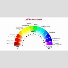 Top 3 Ways To Support Ph Balance  Alkaline Foods List