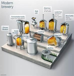 Beer Company 3d Model Production Process Diagram  8p  Jpg