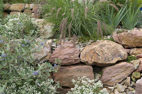 Pflanzen Für Steingarten Immergrün by Pflanzen F 252 R Den Steingarten Unsere Top 10 Plantura