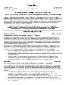 business analyst resume template 2015 resume professional writers non profit executive resume