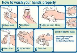 protocole de lavage des mains en cuisine bihs wiki handwashing