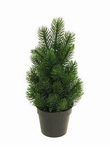 Tannenbaum Im Topf : edel tannenbaum rory im topf 32 cm hoch kaufen otto ~ Frokenaadalensverden.com Haus und Dekorationen