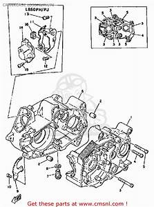 Yamaha Chappy Engine Diagram