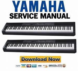 Yamaha P-80 P80 Service Manual  U0026 Repair Guide