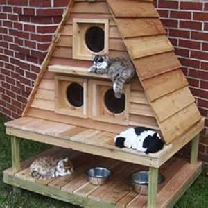 cat mansion 10 outdoor cat houses world s best cat litter