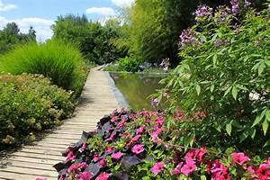 galerie photo des martels le jardin en ete With plan de bassin de jardin 6 le jardin jardins de la ferme bleue