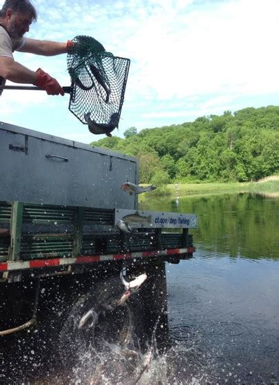 Ct Boating License by Ri Ponds Stocked With Trout For Memorial Day Weekend New
