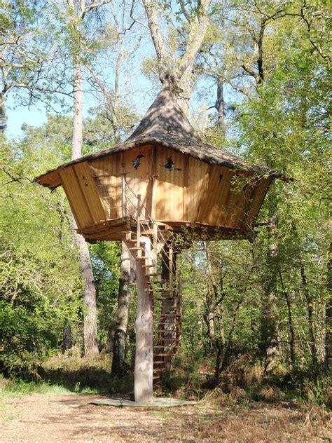 maison en bois dans les arbres cabane dans les arbres 233 co lodges perch 233 s pour un weekend dans les bois nature construction