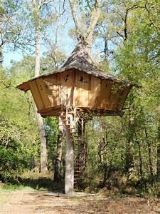 Tuer Un Arbre Avec De L Acide : fabriquer une cabane en bois dans un arbre ~ Dailycaller-alerts.com Idées de Décoration