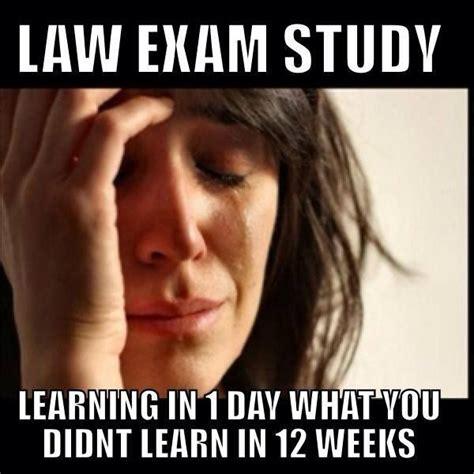 Law School Memes - 52 best law school memes images on pinterest school memes avocado and hilarious