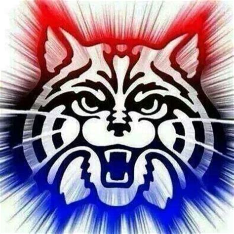beardown arizona wildcats arizona wildcats