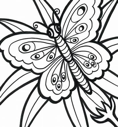 Coloring Easy Pages Adults Adult Printable Butterfly