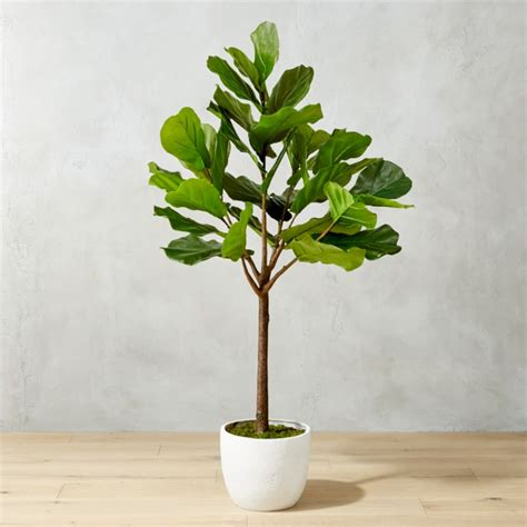 potted faux fiddle leaf fig reviews cb