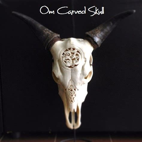 Decorated Cow Skulls Australia by 130 Best Images About Carved Animal Skulls On
