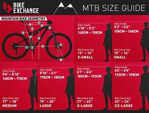 Buying A Mountain Bike  Everything To Know