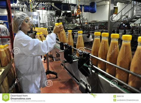 cuisine industrie food industry hygiene royalty free stock photography