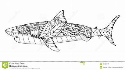 Shark Vector Zentangle Illus Stippled Stylized Illustration
