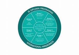 International Baccalaureate  Ib