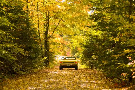 Fall Car Care And Safety Tips
