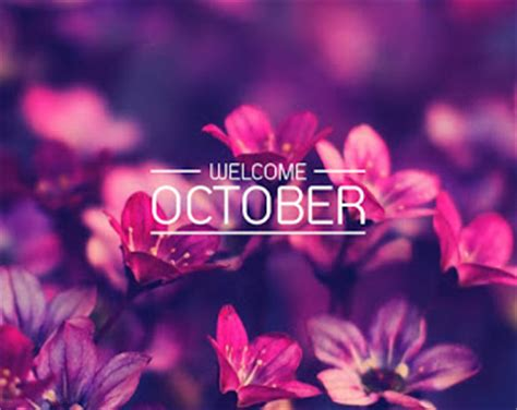 Pictures Bbm Welcome October Quotes 2017  Kochie Frog