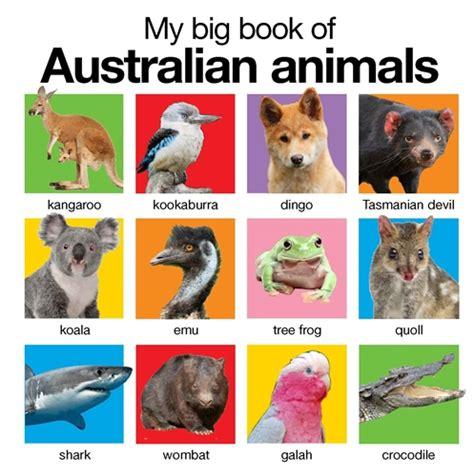 my big book of australian animals pan macmillan au