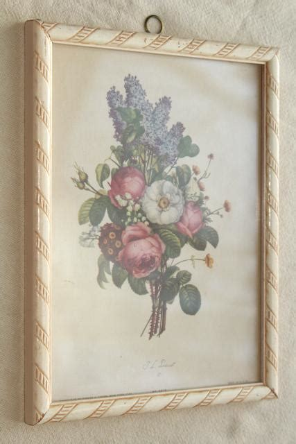 shabby chic framed pictures vintage botanical prints floral still life pictures framed pair shabby cottage chic