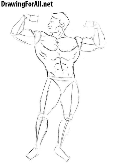 How to Draw a Bodybuilder for Beginners | Drawingforall.net