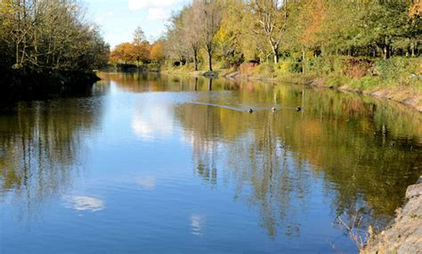 lake victoria park belfast 2 169 albert bridge