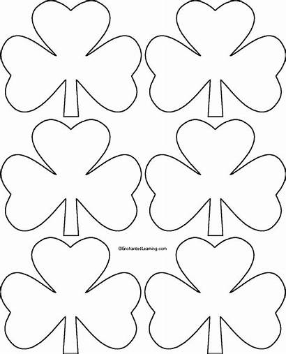Shamrock Template Templates Printable Patrick Crafts St