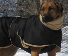 blue rhodesian ridgeback dog rhodesian ridgeback dog coat